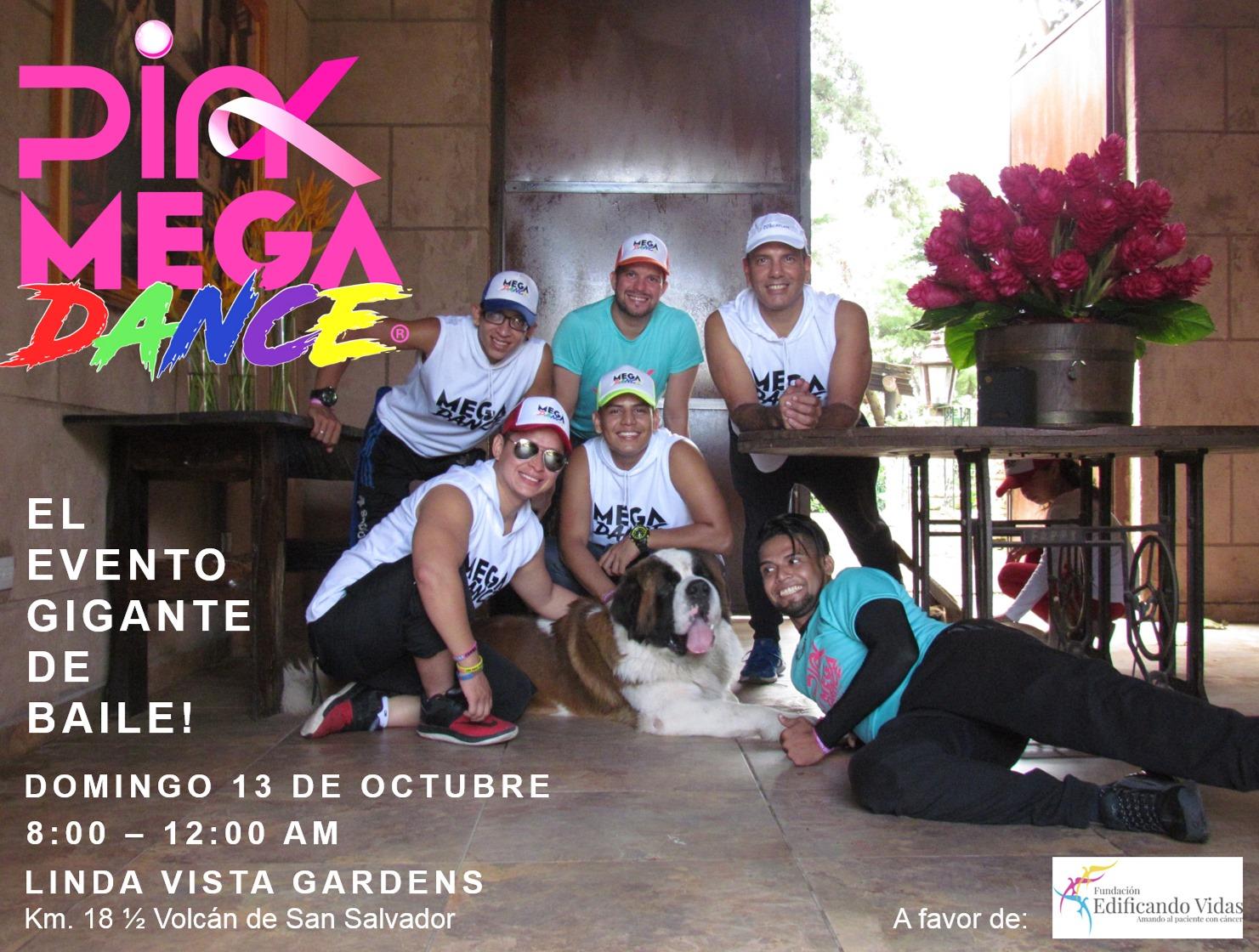 Pink mega Dance